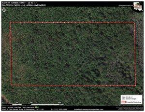 MarshyTimberTract_Aerial_010917-01