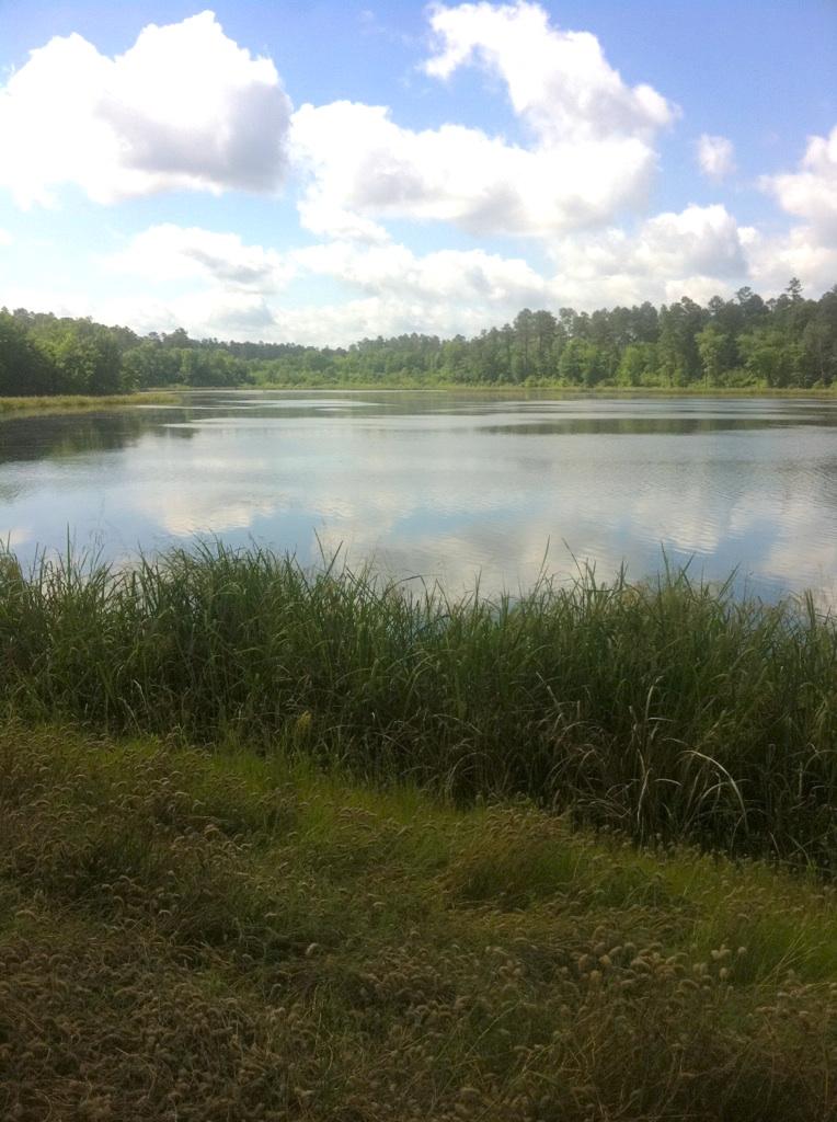 Fish lake refuge caddo parish 486 acres mossy oak for Caddo lake fishing