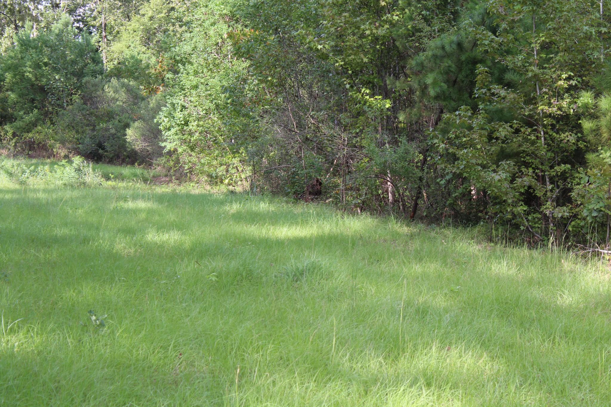 Buckhorn Ridge Lot #4, Bossier Parish