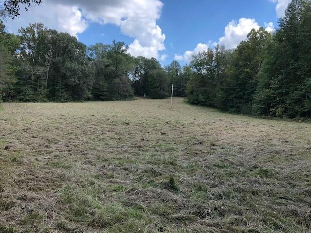 Damascus Ridge Tract, Holmes County, MS, 82 Acres +/-