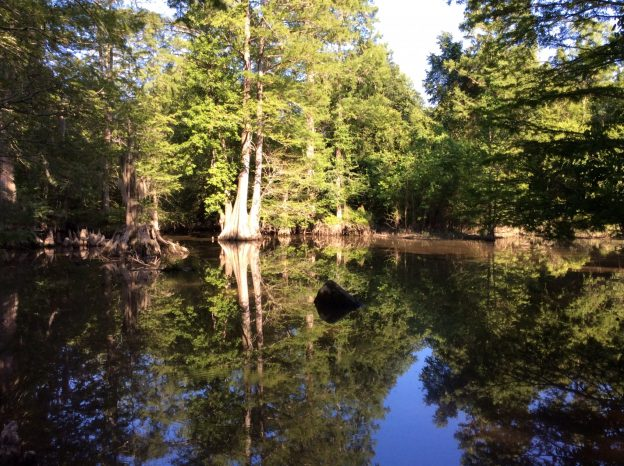 Castor Creek Tract, Caldwell Parish, 350 Acres +/-