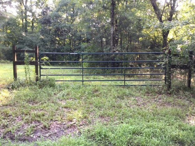 Cheerful Valley Tract, West Feliciana Parish, 50 Acres +/-