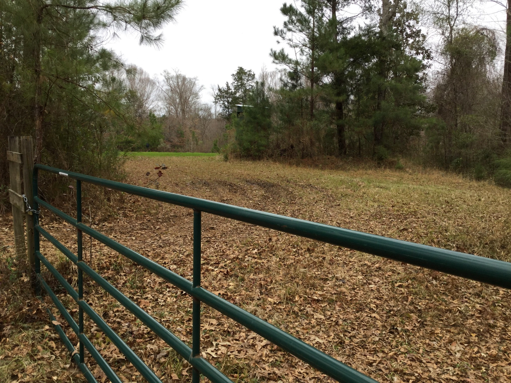 Cheerful Valley Lot 1A and Lot 1B Tracts , West Feliciana Parish, 11 Acres +/-
