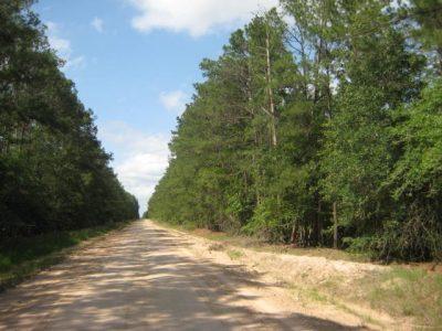 Chita Tract of Trinity County, TX, 5,079 Acres +/-