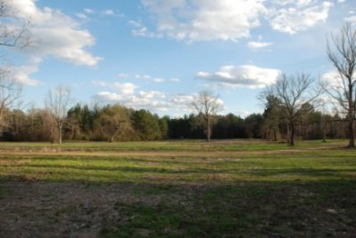 Caddo Parish Recreational land for sale