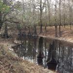 Winn Parish Recreational land for sale
