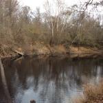 Timberland property for sale in Winn Parish