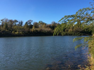 Rapides Parish Recreational property for sale