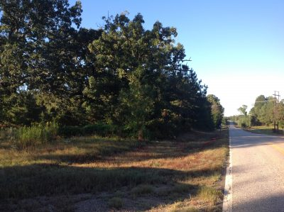 Commercial property for sale in Nevada County
