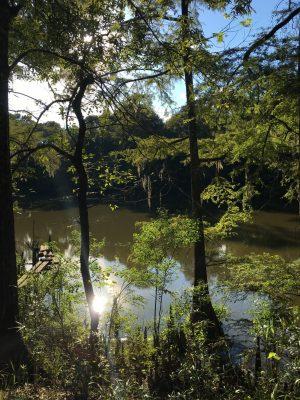 Residential land for sale in Beauregard Parish