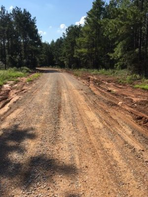 DeSoto Parish Investment land for sale
