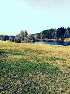 Bossier Parish Investment land for sale