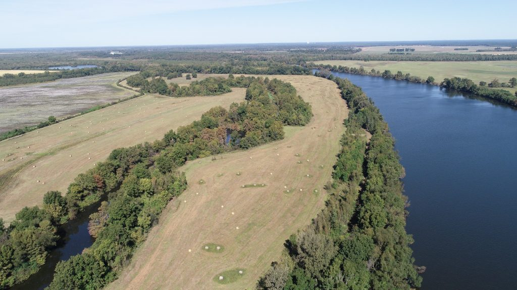 Louisiana hay field near Red River for sale