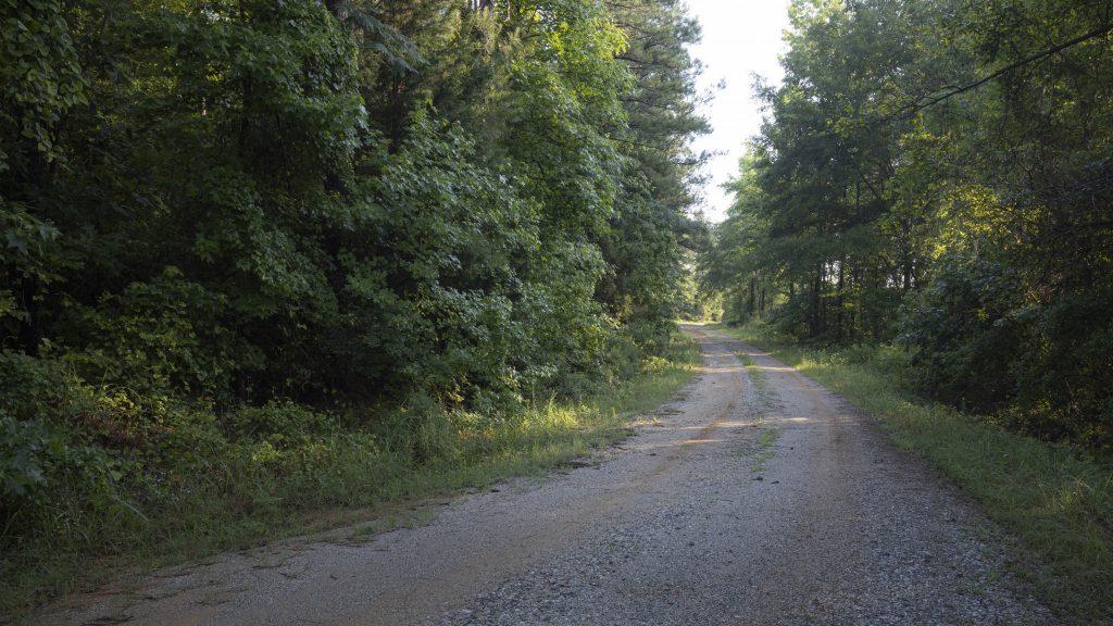 Louisiana land for sale - Woodlands
