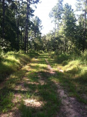 Agricultural property for sale in Caddo Parish