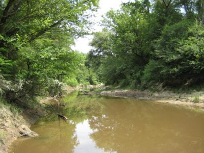 Timberland property for sale in Winn Parish
