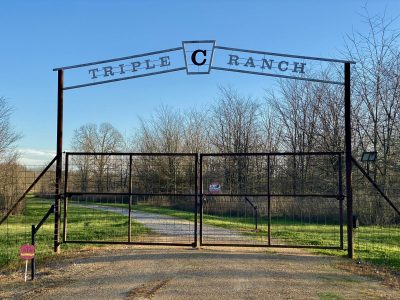 "Triple ""C"" Ranch, Grant Parish, 400 Acres +/- LAGRANBS400"