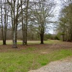 Rapides Parish Timberland property for sale