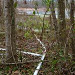 Rapides Parish Recreational land for sale