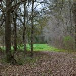 Recreational property for sale in Rapides Parish