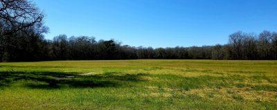 The Ellard Homeplace, Catahoula Parish, 32 Acres +/- LACATACA32