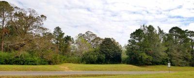James Branch Rd Tract, Grant Parish, 86 Acres +/-