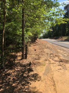 Miller Branch Tract, Caddo Parish, 50 Acres +/-