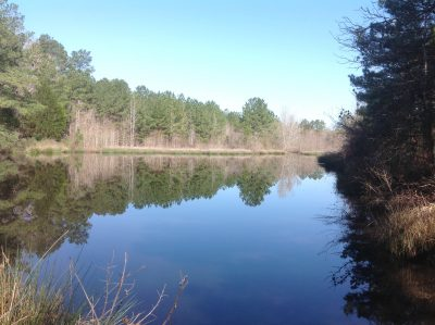 Webster Parish Recreational land for sale