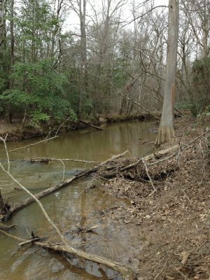 Recreational property for sale in Webster Parish