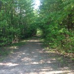 Investment property for sale in Little River County
