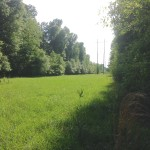 Little River County Recreational property for sale