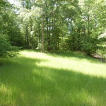 Investment property for sale in West Feliciana Parish