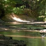 West Feliciana Parish Recreational land for sale