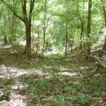 Recreational property for sale in West Feliciana Parish