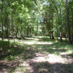 Recreational land for sale in West Feliciana Parish