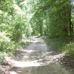 Timberland for sale in West Feliciana Parish