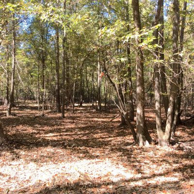 Caldwell Parish Development property for sale
