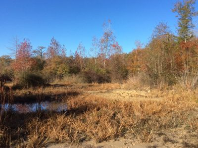 Winn Parish Development property for sale