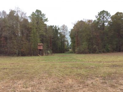 Red River Parish Investment land for sale