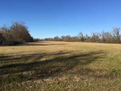 Agricultural property for sale in Avoyelles Parish