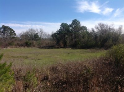 Development property for sale in DeSoto Parish