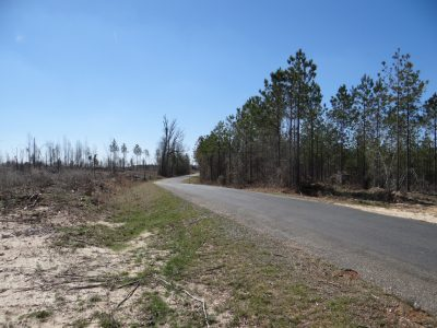 Claiborne Parish Recreational property for sale