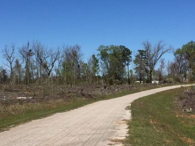 Investment land for sale in Lincoln Parish