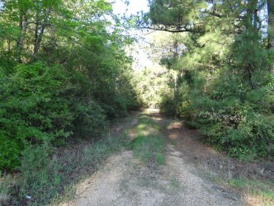 Agricultural property for sale in Webster Parish