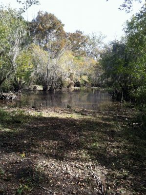 Webster Parish Recreational property for sale