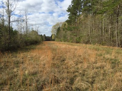 Caldwell Parish Recreational property for sale