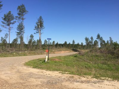 Jackson Parish Development property for sale