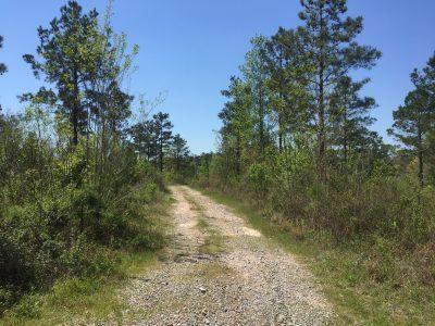 Jackson Parish Residential land for sale