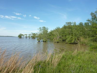 Cameron Parish Residential land for sale