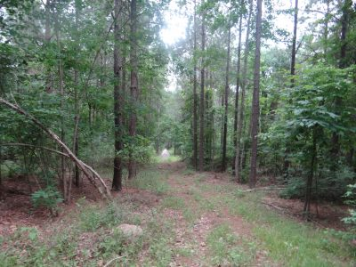 Residential property for sale in Webster Parish